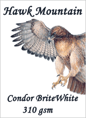Hawk Mountain CONDOR BRIGHT WHITE Fine Art Inkjet Photo Paper