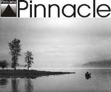 Pinnacle Clearance*